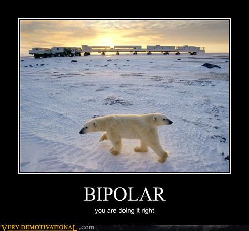 Demotivational Posters Bipolar Polar Bears