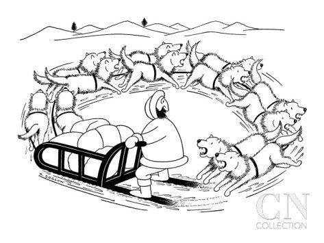 otto-soglow-eskimo-on-dog-sled-the-dogs-are-running-around-in-a-circle-and-are-coming-new-yorker-cartoon