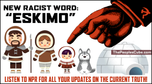new racist word